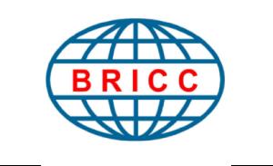 Bricc